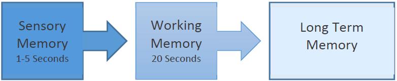 imagen que muestra el proceso de información que se mueve de la memoria sensorial a la memoria de trabajo y a la memoria a largo plazo
