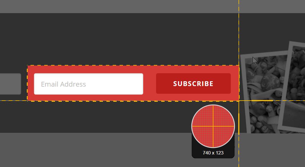 Snagit captura el punto de mira seleccionando un formulario de registro de correo electrónico.